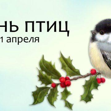 Тематический вечер, посвященный Международному дню птиц