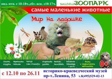 Выставка самых маленьких животных «Мир на ладошке»