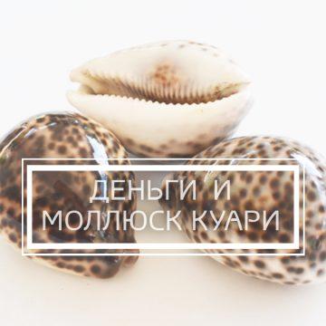 Видеорассказ «Деньги и моллюск каури»